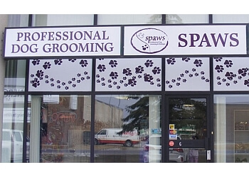 Milton pet grooming Spaws Professional Dog Grooming & Boutique