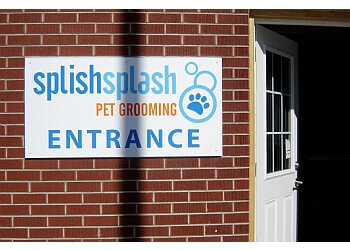 Orangeville pet grooming Splish Splash Pet Grooming