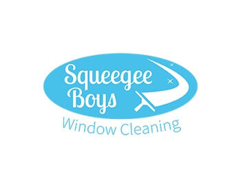 Newmarket window cleaner Squeegee Boys Window Cleaning