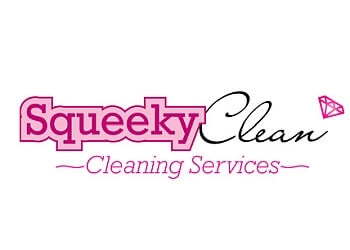 Nanaimo house cleaning service Squeeky Clean
