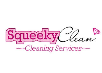 Squeeky Clean Cleaning Services