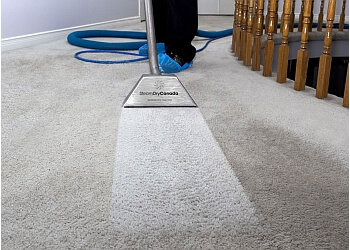 3 Best Carpet Cleaning In Niagara Falls On Threebestrated