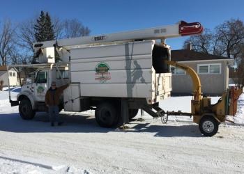 Winnipeg tree service Stevens Tree Specialists