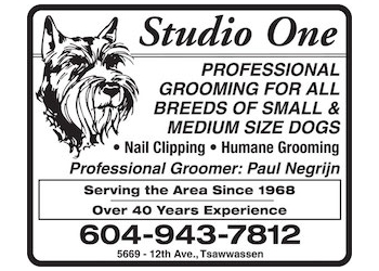 Delta pet grooming Studio One
