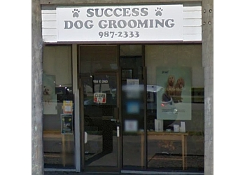 North Vancouver pet grooming Success Dog Grooming