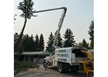 Calgary tree service Sullivan Tree Service Ltd