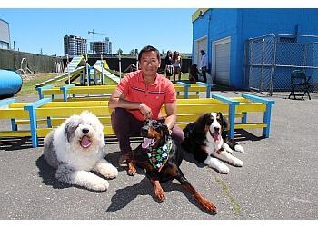 Richmond dog trainer TK Canine Training Centre