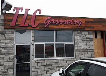 Ottawa pet grooming TLC Grooming and Sharpening Service