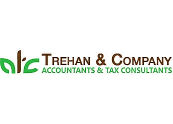 Edmonton tax service TREHAN & COMPANY