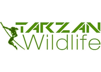 Mississauga animal removal Tarzan Wildlife Inc.