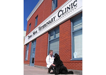 St Johns veterinary clinic Terra Nova Veterinary Clinic