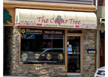 North Bay mediterranean restaurant The Cedar Tree Lebanese Restaurant