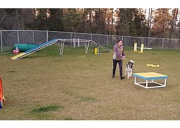 Thunder Bay dog trainer  The Dog Classroom