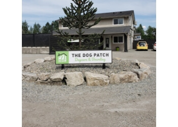 Port Coquitlam pet grooming The Dog Patch