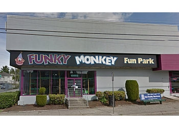 Surrey amusement park The Funky Monkey Fun Park