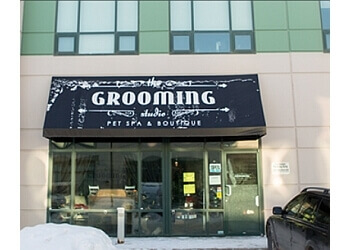 Sherwood Park pet grooming The Grooming Studio