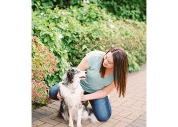 Abbotsford dog trainer   The K9 Coach