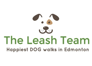 Edmonton dog walker The Leash Team