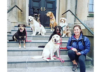 St Catharines dog trainer The Perfect Pack Niagara