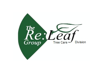 Markham tree service The Re:Leaf Group Tree Care Division