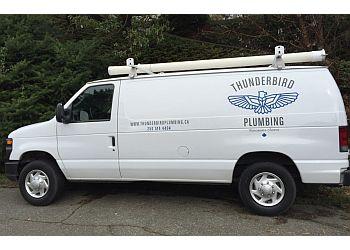 Victoria plumber Thunderbird Plumbing Solutions, Inc.