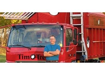 Ottawa tree service Tim O Tree