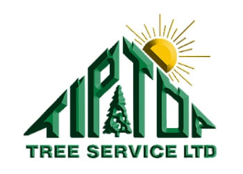 Welland tree service Tip Top Tree Service Ltd