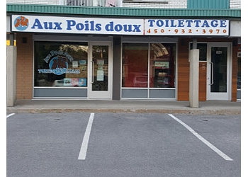 Repentigny pet grooming Toilettage Aux Poils Doux