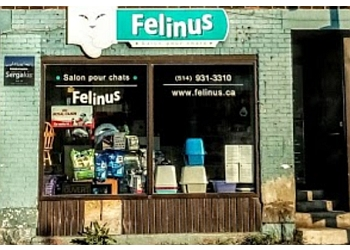 Montreal pet grooming Toilettage Felinus Inc.