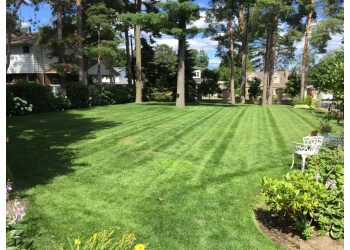 North Bay lawn care service Tony's Mowing Plus