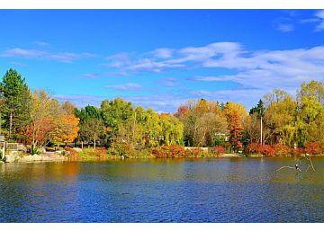 Markham public park Toogood Pond Park