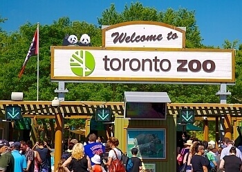 Toronto places to see Toronto Zoo