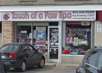 3 best pet grooming in oshawa on threebestrated touch of a paw spa solutioingenieria Image collections