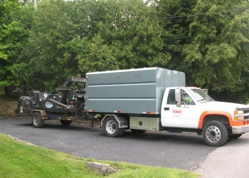 Gatineau tree service Tower Tree Services