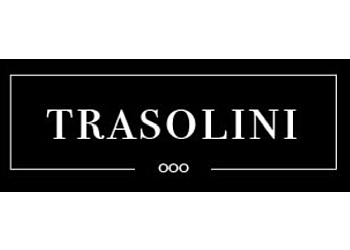 Vancouver pool service Trasolini Pools Ltd.
