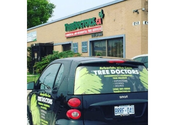 Toronto tree service TREE DOCTORS INC.