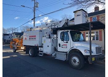 Halifax tree service Tree Works LTD