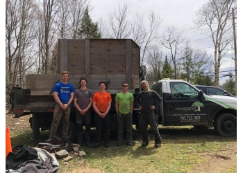 Barrie tree service Treescapes Corp.