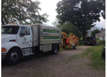 Kitchener tree service Tri-City Tree Service