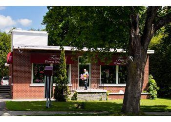 Fredericton florist Trites Flower Shop