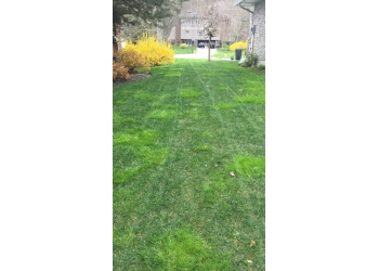 St Catharines lawn care service TruGreen