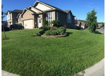 Sudbury lawn care service Turf King Lawn Care