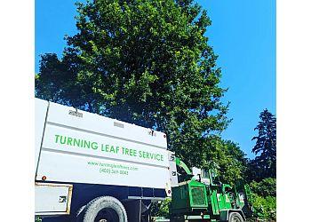 Turning Leaf Tree Service