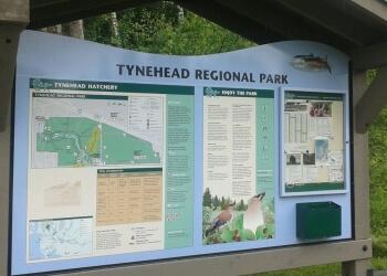 Tynehead Regional Park Trail