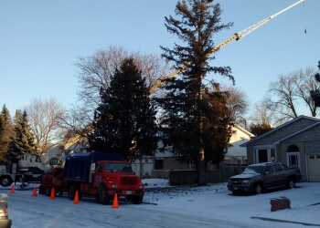 Upper Canada Tree Services