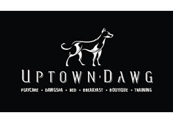 Uptown Dawg