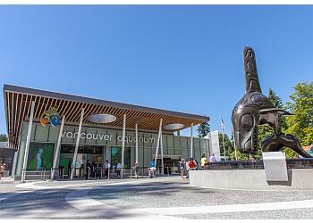 Vancouver places to see Vancouver Aquarium