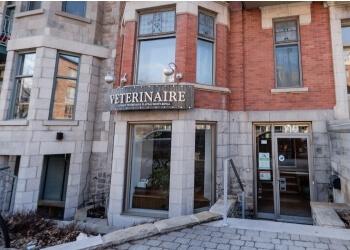 Montreal veterinary clinic Clinique Vétérinaire Plateau Mont Royal