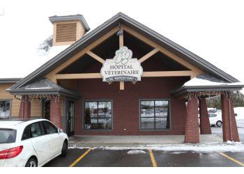 Repentigny veterinary clinic Hôpital Vétérinaire De Repentigny
