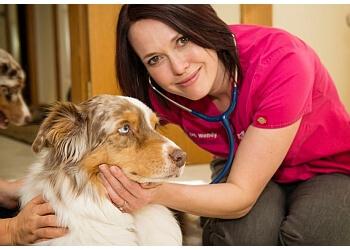 Calgary veterinary clinic Vets To Go Mobile Veterinary Care